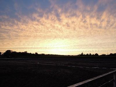 乗馬クラブから見たきれいな夕焼け