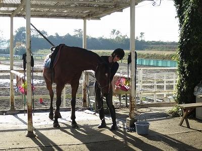 素晴らしい乗馬体験を