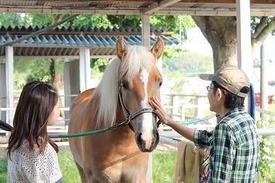 体験乗馬風景