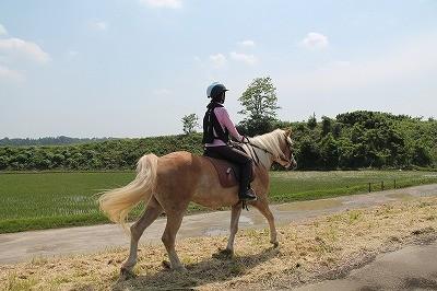 乗馬で笑顔
