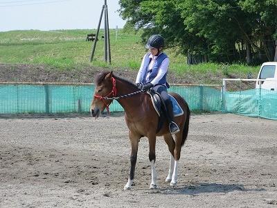 新馬調教 騎乗中のモグペロ