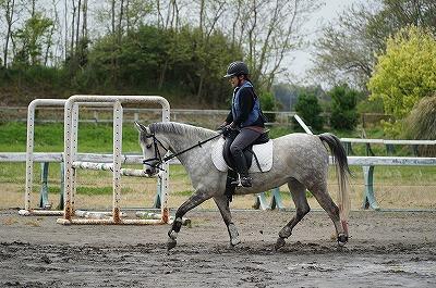 馬が楽な乗り方 馬を楽にする乗り方 馬の負担が少ない乗り方