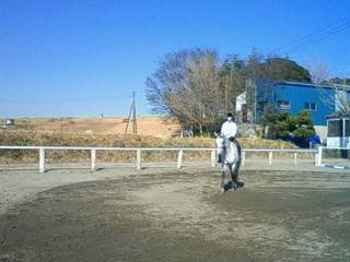乗馬練習中
