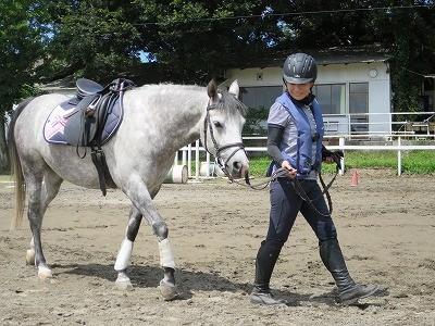 馬と共感による共鳴