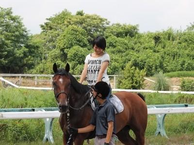 乗馬の練習と調教の共通点