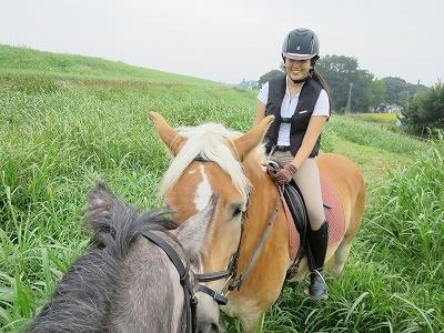 馬も人もみんな仲良く