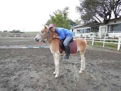 安心して楽しめる中間種の馬もいます