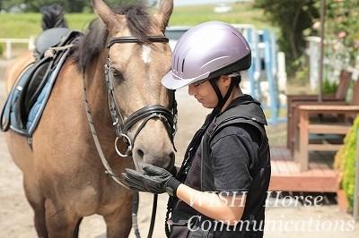 体験乗馬開催中