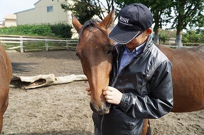 馬を健康にしたい