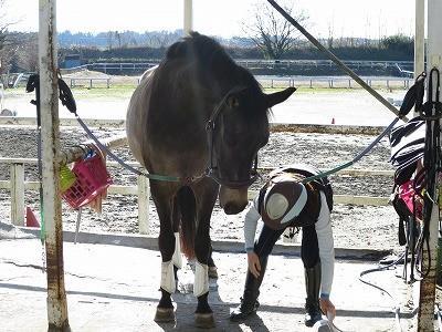 馬と心と心のつながり