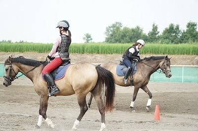 乗馬で愛を