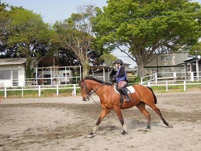 乗馬は馬も人もリラックスが基本です