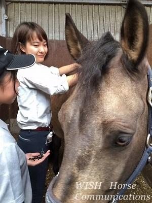 馬のたてがみ編みにはコツがあります
