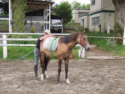 馬との信頼のきずな