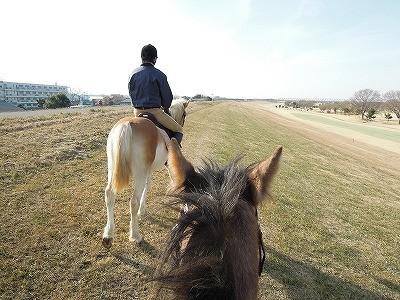 馬に乗って出かけよう!
