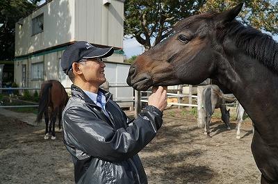 ウィッシュホースコミュニケーションズの馬の扱い方
