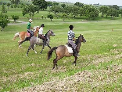 可愛い馬には旅をさせよ
