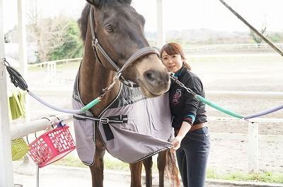馬との楽しい時間