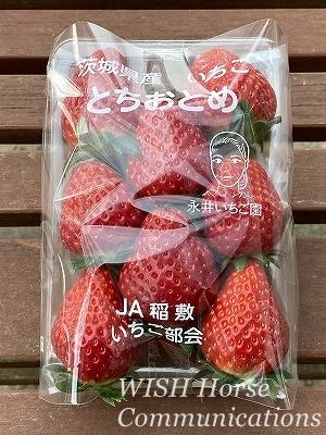 農家の初物イチゴ
