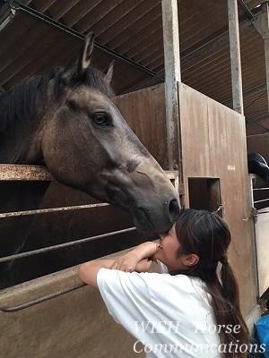 馬とチュー