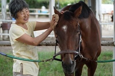 馬は手入れが大好き