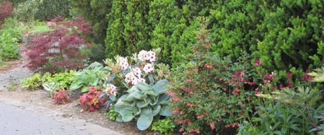 Gartengestaltung kiehsler baumschulen - Gartengestaltung app ...