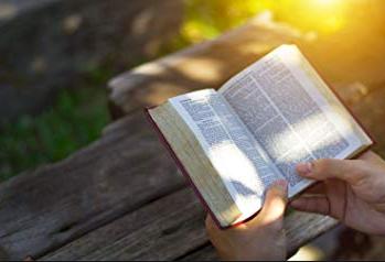 lies die Bibel, weil...