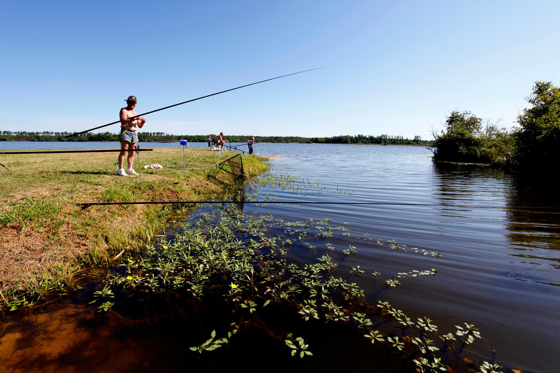 Découvrez les meilleurs coins pêche du territoire