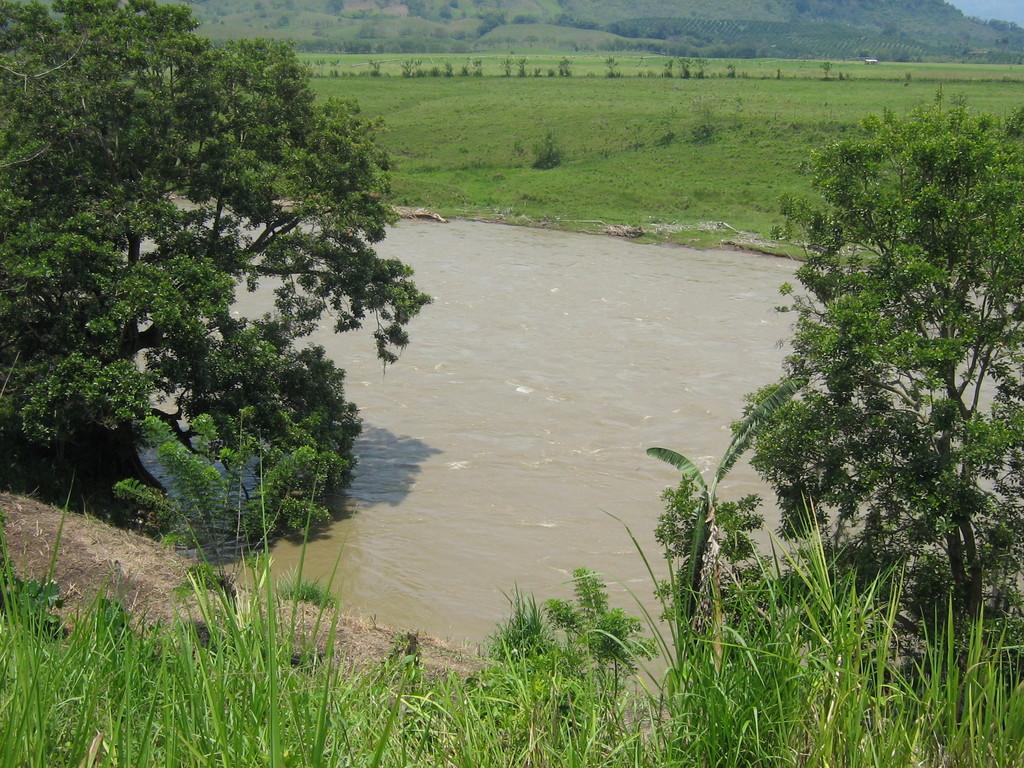 Curva del río Cauca K41
