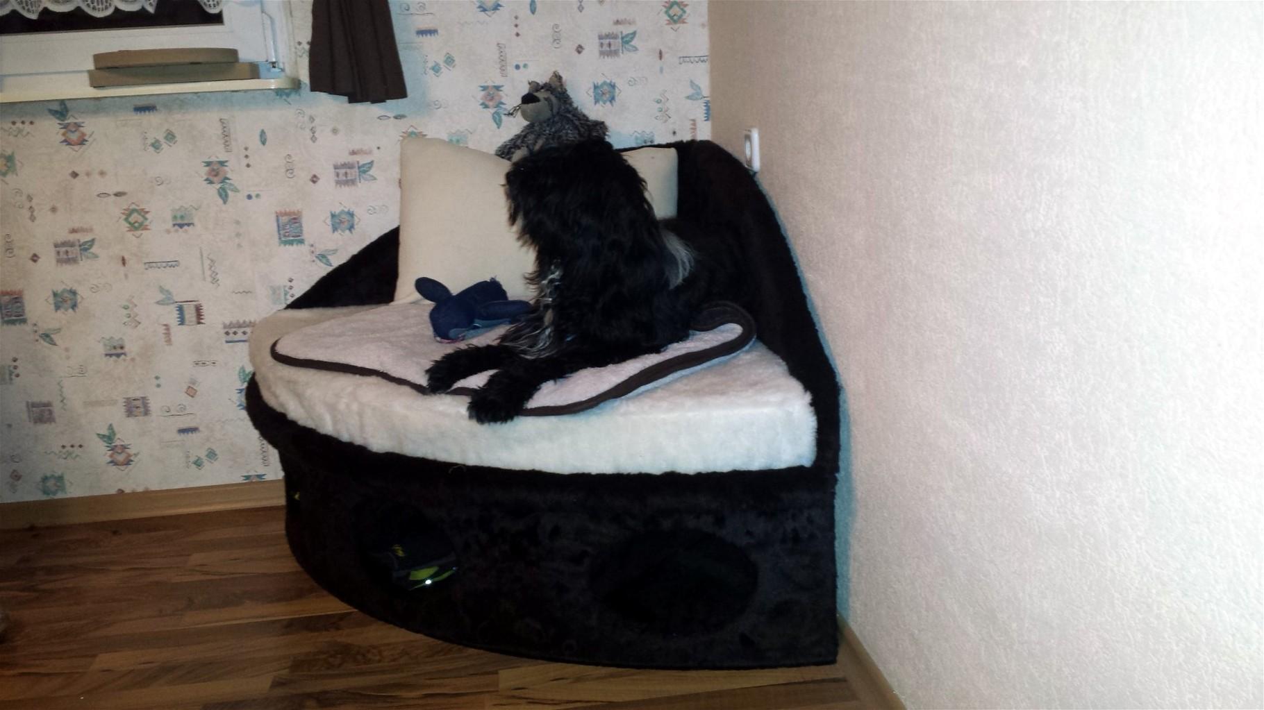 Danika und ihre eigene Couch :-)