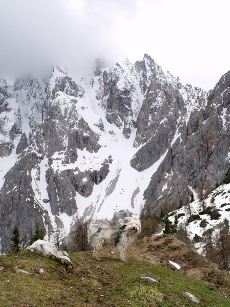 Shari fährt oft mit in die Berge