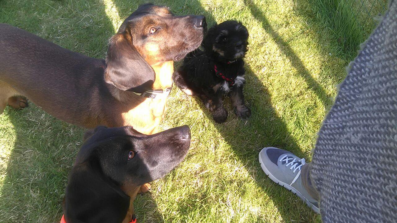 Amira mit ihren großen neuen Freundinnen