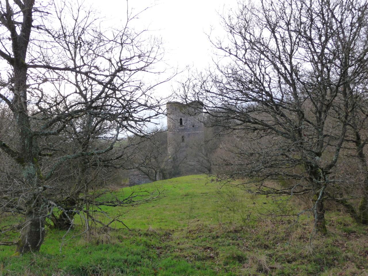 die Burgruine Baldenau in der Ferne