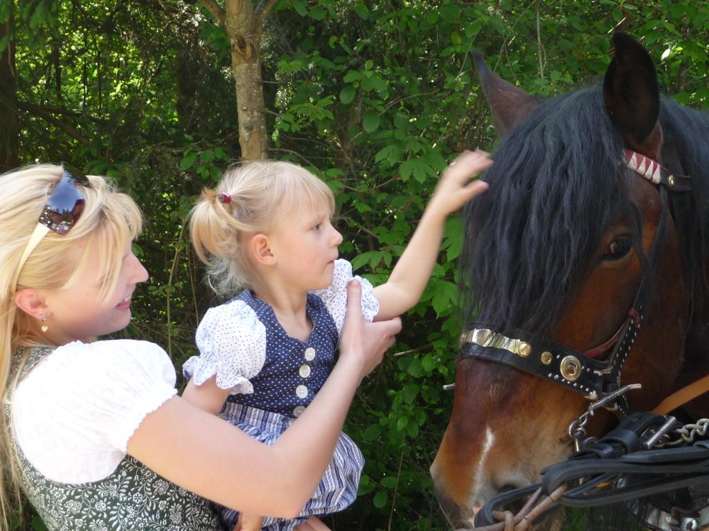 Uhhh, ein Pferd. Streicheln ist Ok. nur drauf sitzen nicht.