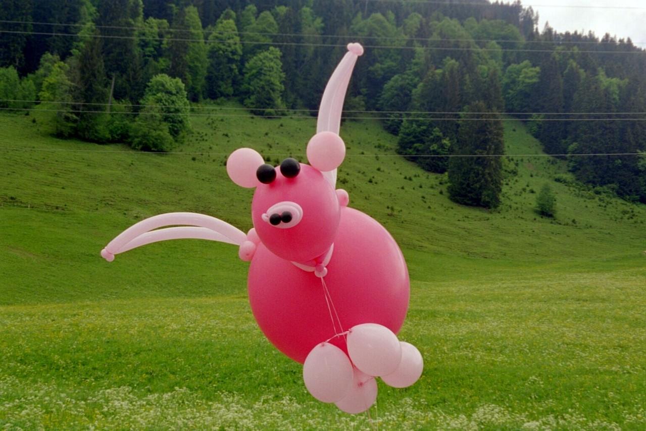 fliegendes Schwein