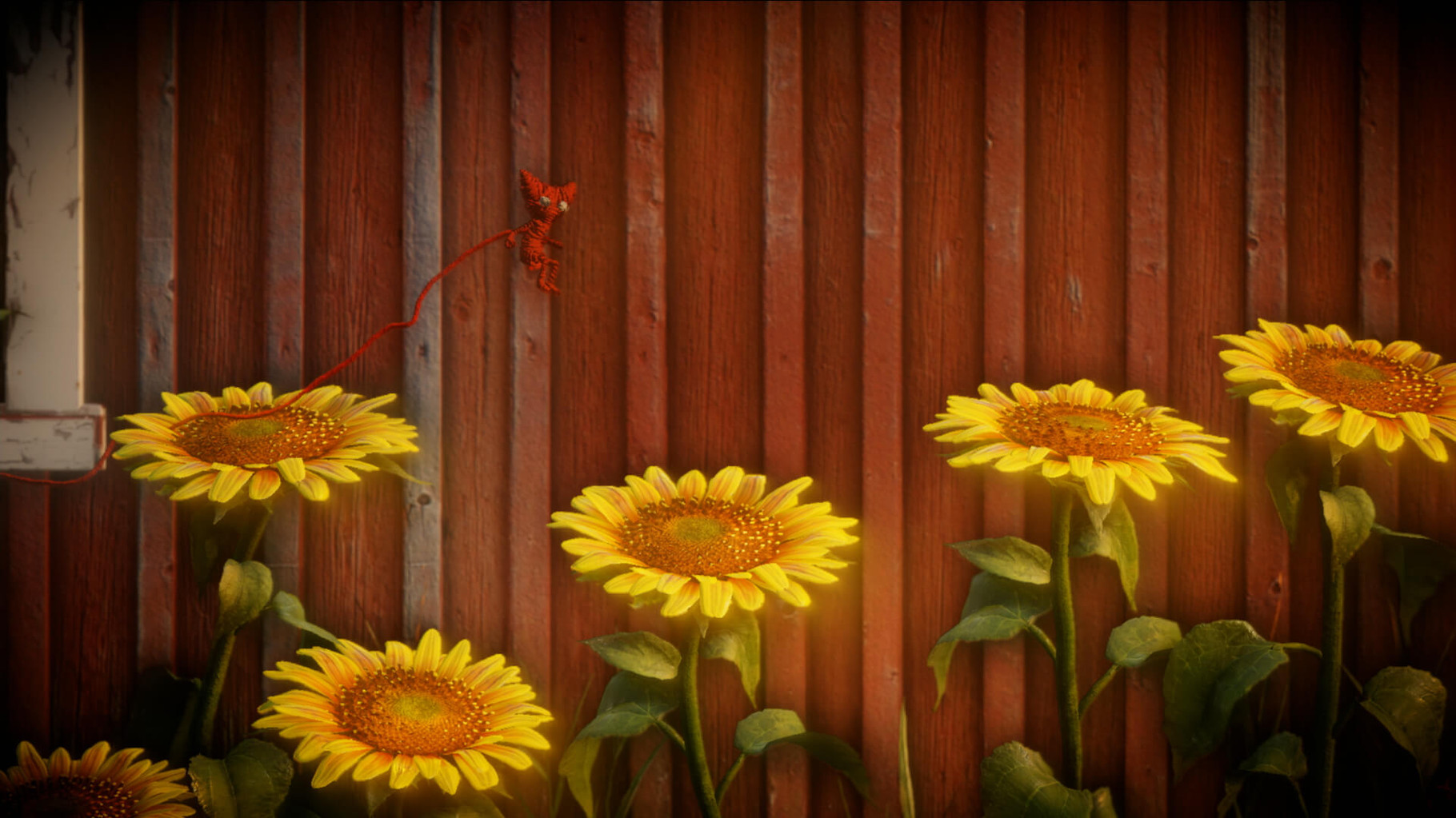 ...schnuppert an knallgelben Sonnenblumen...