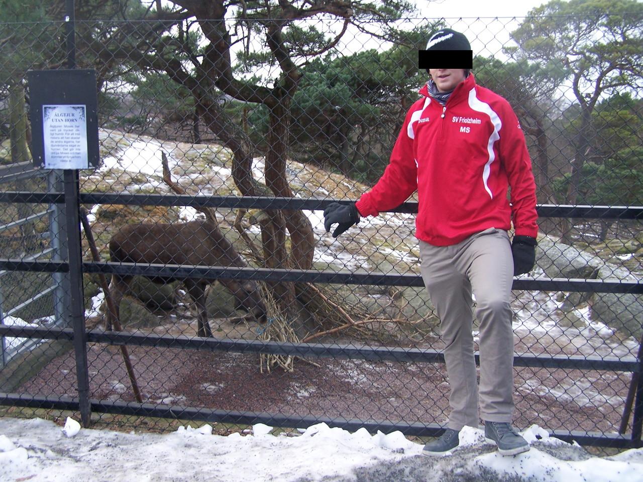 SV beim Elche grätschen - Göteborg