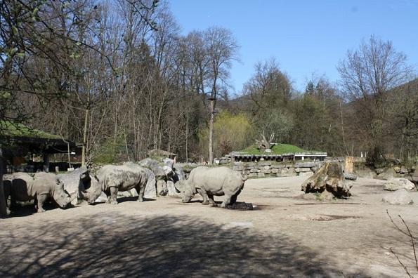 Salzburger Zoo Hellbrunn