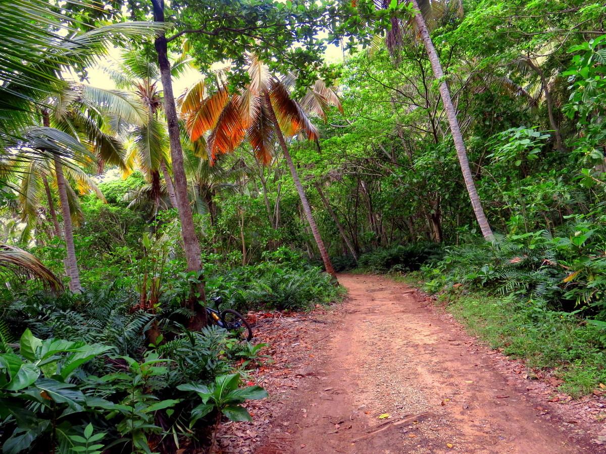 Trail to Boca del Diablo