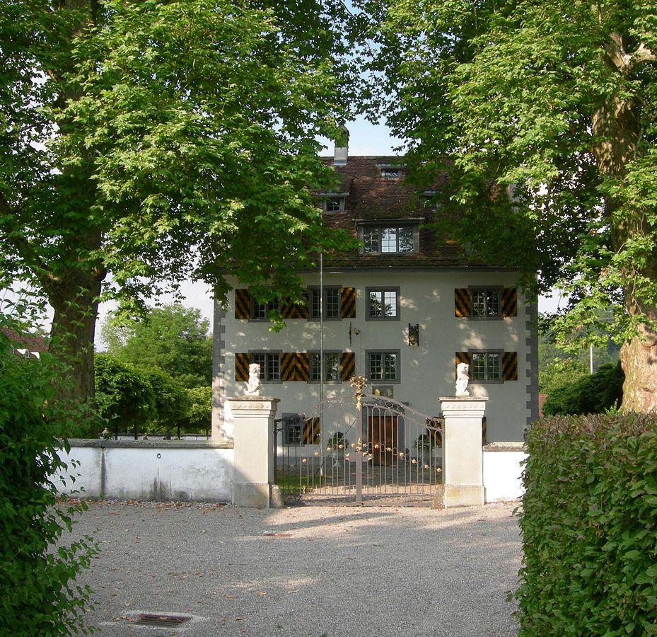 Schloss Knonau Handziegel Reparatur