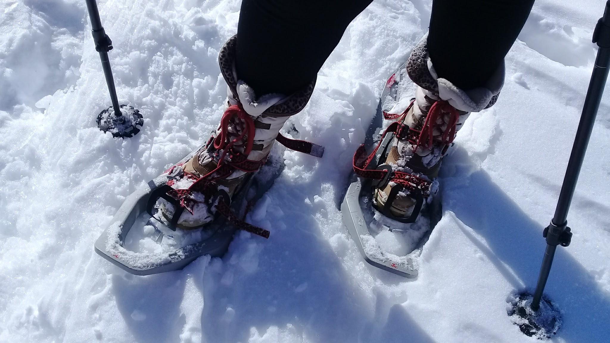 Schneeschuhlaufen auf dem ...