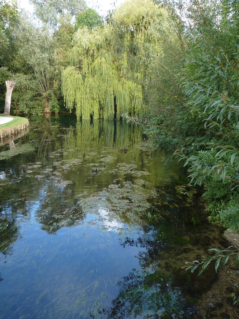 Bourges : les Marais de Bourges