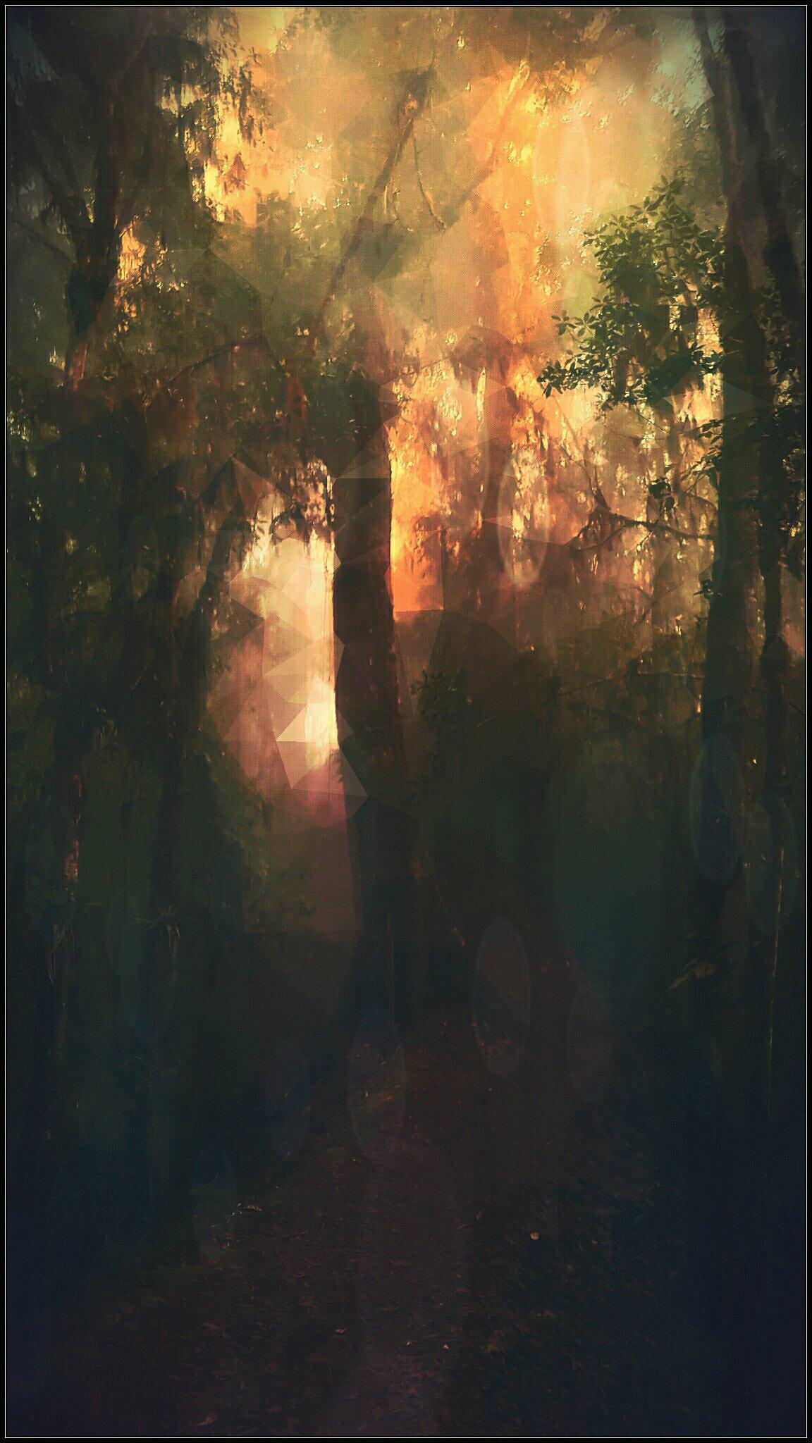 Dschungel, digitale Bearbeitung eigenen Fotos