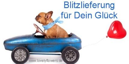 www.lovelyflowers.de - Hier sind Lieferungen immer pünktlich und schnell!