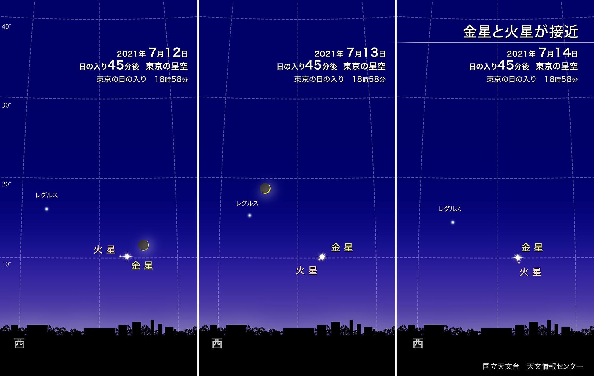 2021年7月11日「アジュガの星のコトバ」