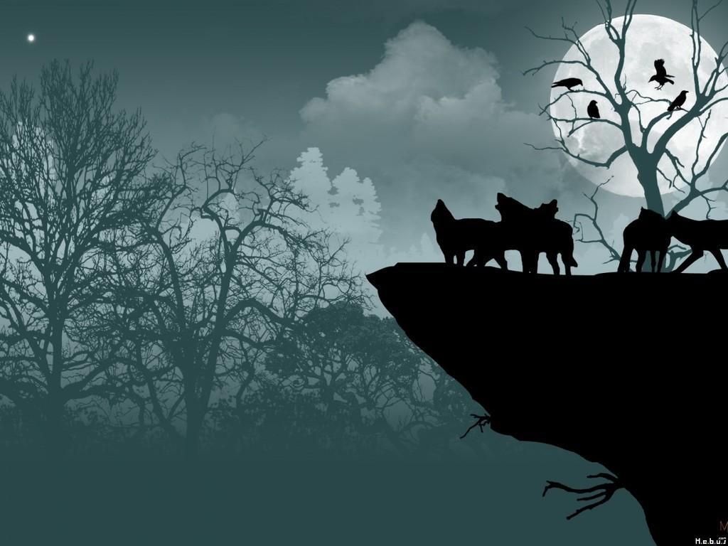 Pas vu le loup au col de Lazarier ,?