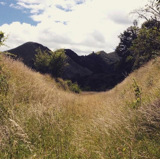 Wunderschöne Landschaft um uns
