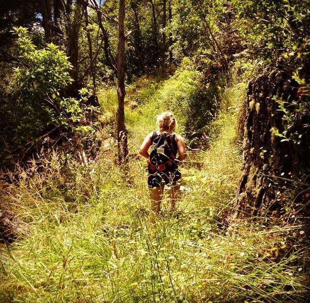 Hiking the track