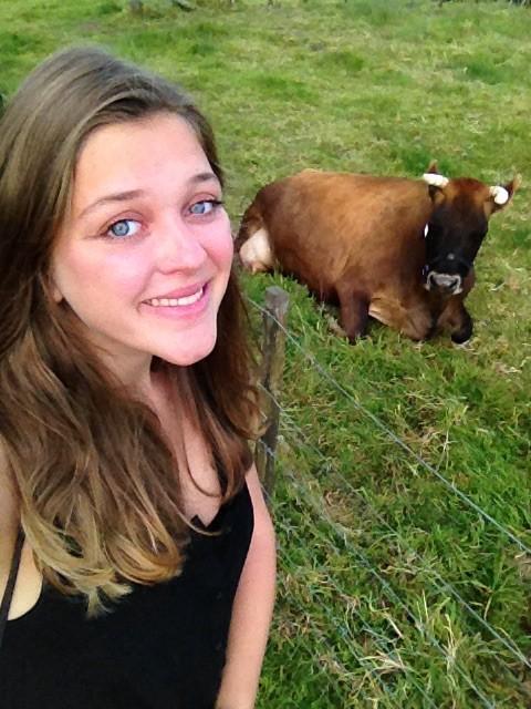 Unsere schwangere Kuh zu Hause!
