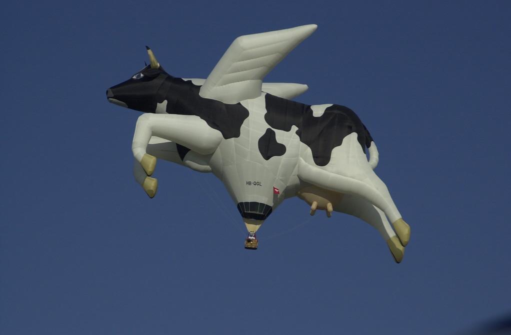 Gurten Festival, fliegende Kuh, © Carmen Weder